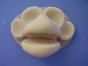 Leroy latex head cast-front view